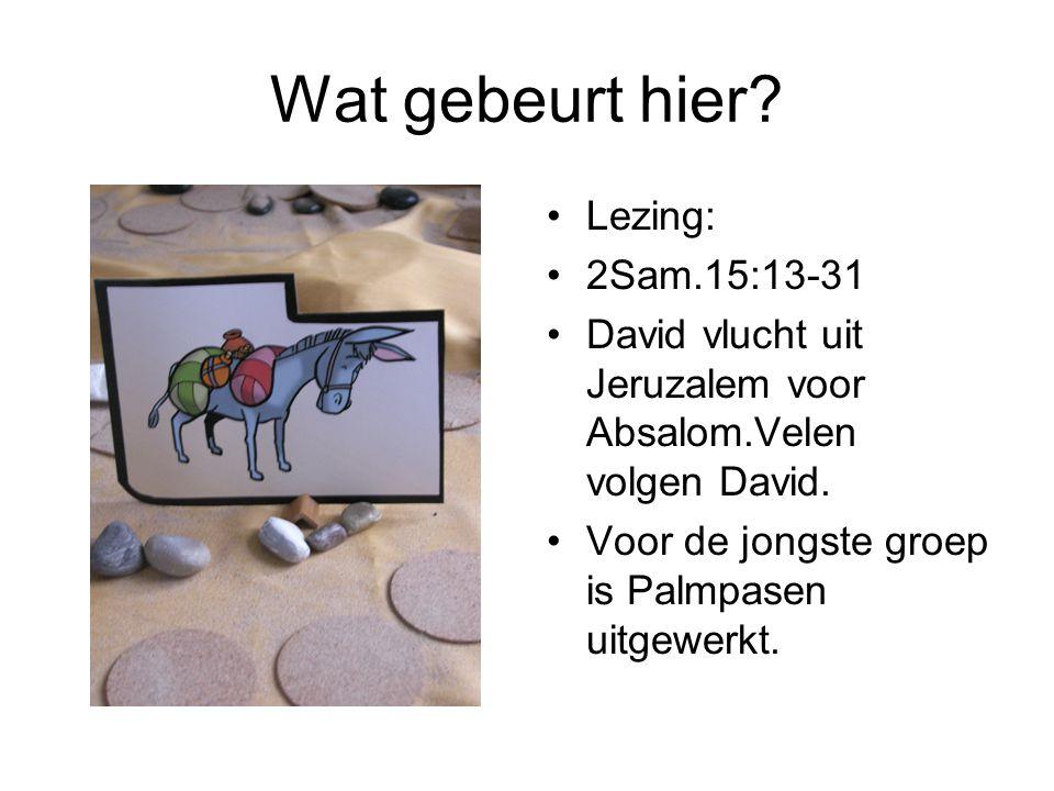 Wat gebeurt hier? •Lezing: •2Sam.15:13-31 •David vlucht uit Jeruzalem voor Absalom.Velen volgen David. •Voor de jongste groep is Palmpasen uitgewerkt.