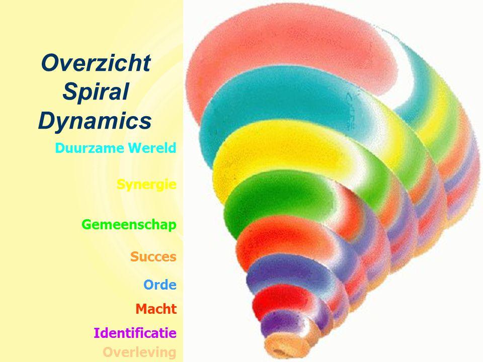Macht Synergie Identificatie Orde Duurzame Wereld Gemeenschap Succes Overleving Overzicht Spiral Dynamics