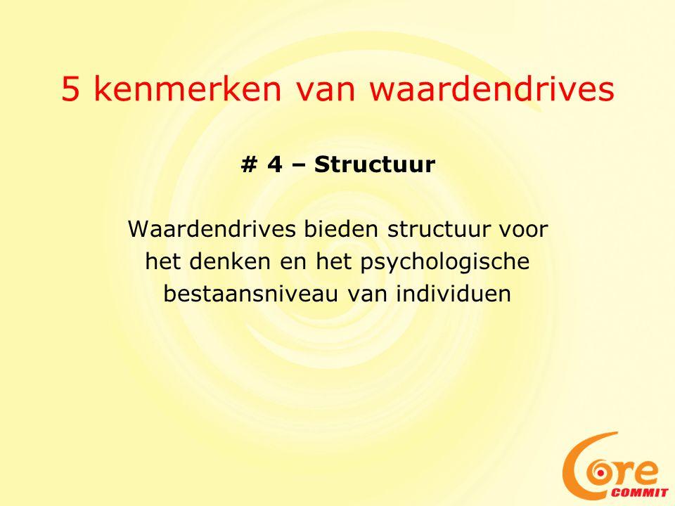 5 kenmerken van waardendrives # 4 – Structuur Waardendrives bieden structuur voor het denken en het psychologische bestaansniveau van individuen