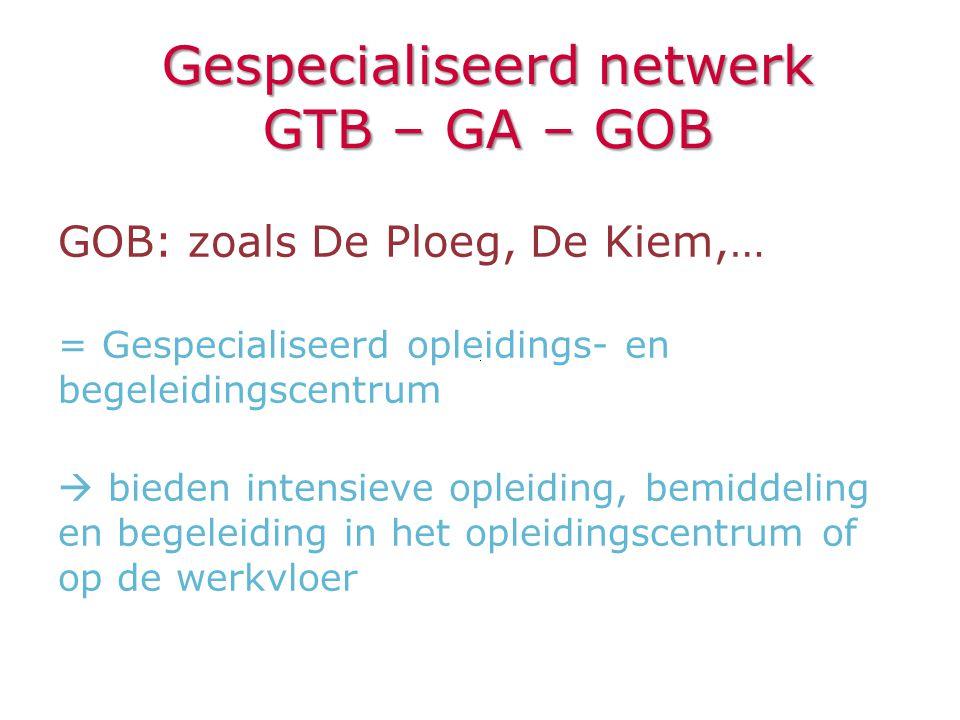 GOB: zoals De Ploeg, De Kiem,… = Gespecialiseerd opleidings- en begeleidingscentrum  bieden intensieve opleiding, bemiddeling en begeleiding in het o
