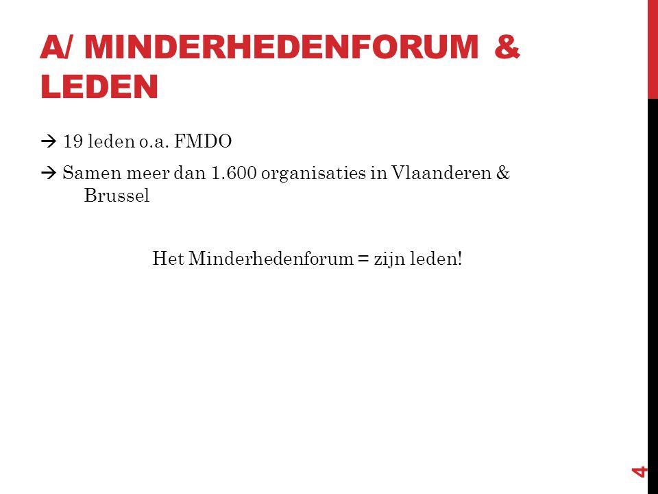ROL MINDERHEDENFORUM  Centraal aanspreekpunt  Inhoudelijke coördinatie project  Methodiekontwikkeling  Signaalfunctie – belangenbehartiging op Vlaams niveau Vb.