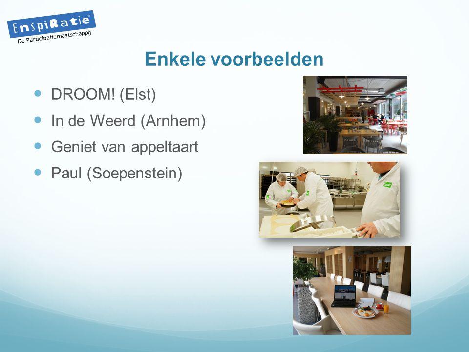 Enkele voorbeelden  DROOM! (Elst)  In de Weerd (Arnhem)  Geniet van appeltaart  Paul (Soepenstein) De Participatiemaatschappij