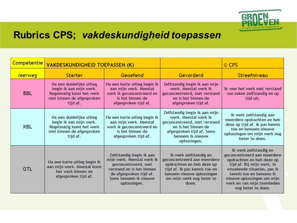Rubrics CPS; vakdeskundigheid toepassen