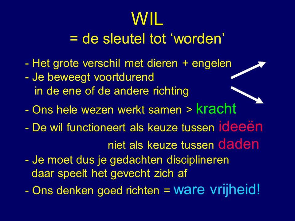 WIL = de sleutel tot 'worden' - Het grote verschil met dieren + engelen - Je beweegt voortdurend in de ene of de andere richting - Ons hele wezen werk