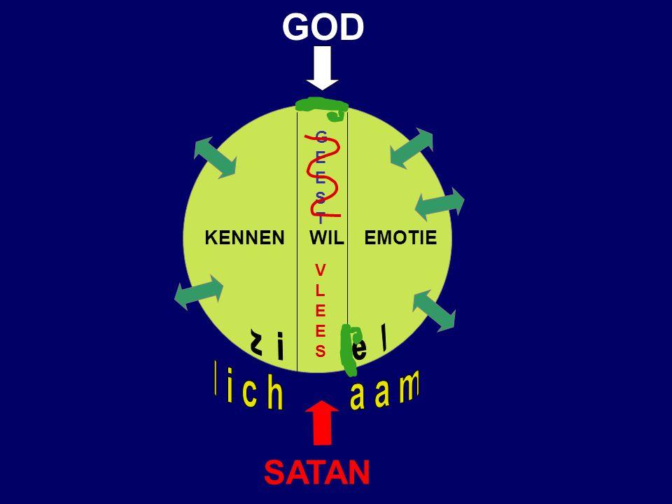 VERSTAND WIL EMOTIE SATAN GOD VLEESVLEES EESTEEST G