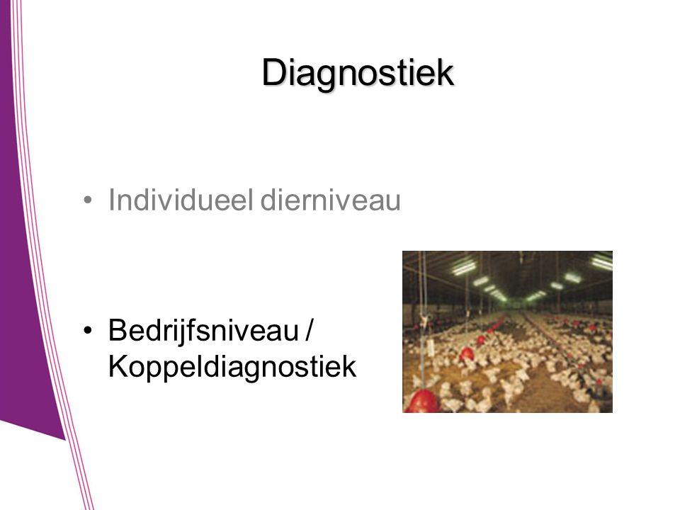 Diagnostiek •Individueel dierniveau •Bedrijfsniveau / Koppeldiagnostiek