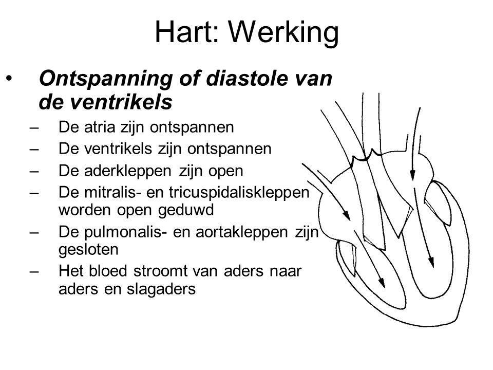 Hart: Werking •Ontspanning of diastole van de ventrikels –De atria zijn ontspannen –De ventrikels zijn ontspannen –De aderkleppen zijn open –De mitralis- en tricuspidaliskleppen worden open geduwd –De pulmonalis- en aortakleppen zijn gesloten –Het bloed stroomt van aders naar aders en slagaders