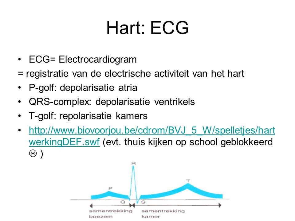 Hart: ECG •ECG= Electrocardiogram = registratie van de electrische activiteit van het hart •P-golf: depolarisatie atria •QRS-complex: depolarisatie ventrikels •T-golf: repolarisatie kamers •http://www.biovoorjou.be/cdrom/BVJ_5_W/spelletjes/hart werkingDEF.swf (evt.