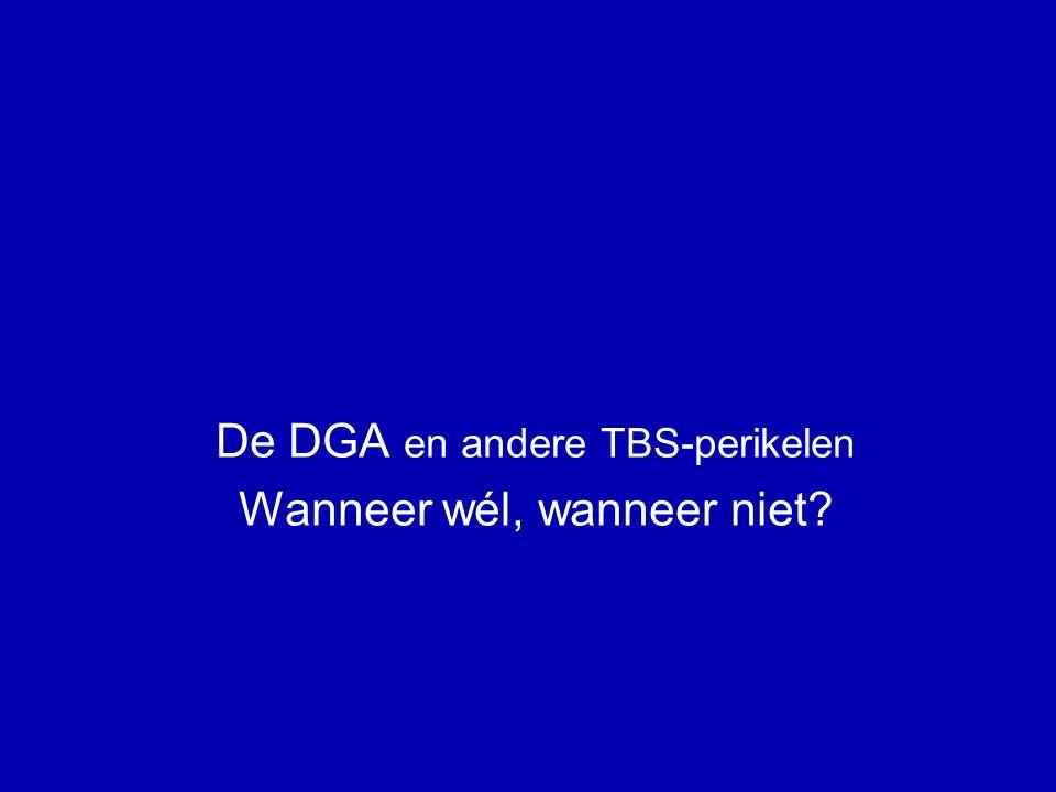 De DGA en borgstelling: TBS .(6) DGA Holding Werk-BV zekerheid BANK krediet Partner Vastgoed Art.