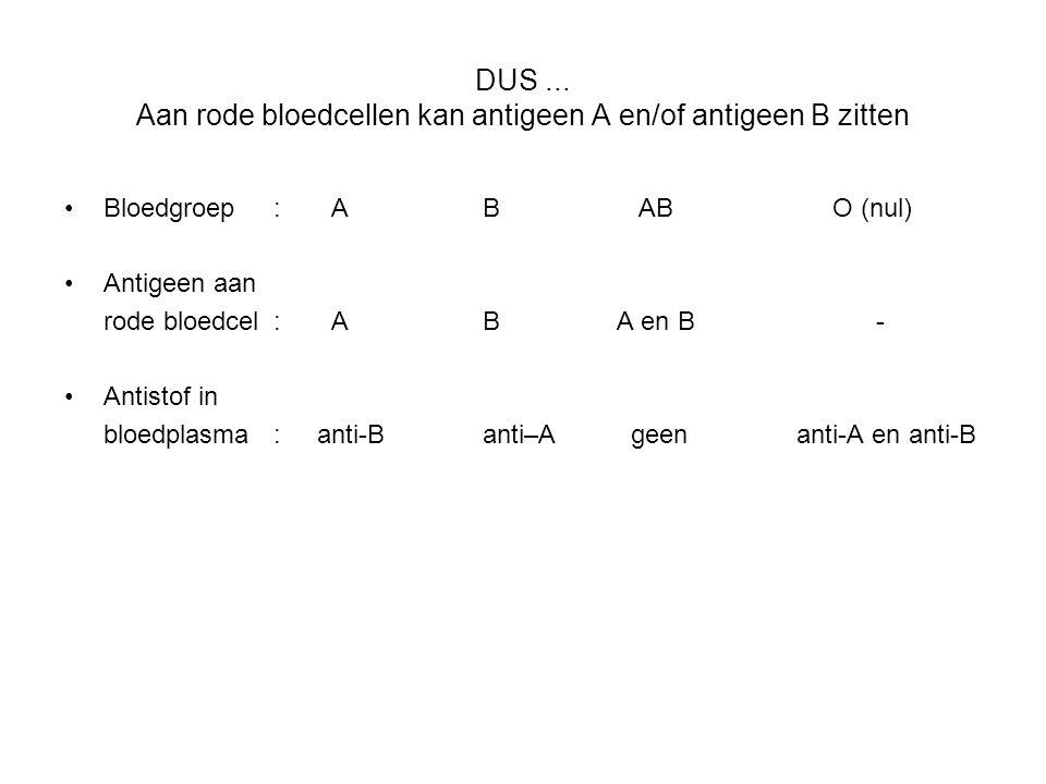 DUS... Aan rode bloedcellen kan antigeen A en/of antigeen B zitten •Bloedgroep: A B AB O (nul) •Antigeen aan rode bloedcel: AB A en B - •Antistof in b