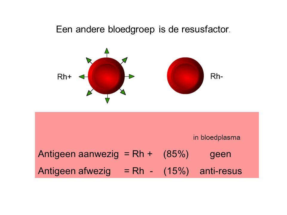 in bloedplasma Antigeen aanwezig= Rh + (85%) geen Antigeen afwezig= Rh - (15%) anti-resus Een andere bloedgroep is de resusfactor.