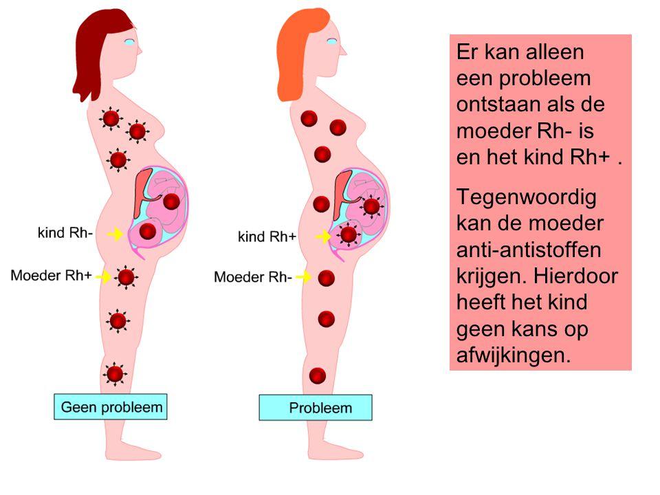 Er kan alleen een probleem ontstaan als de moeder Rh- is en het kind Rh+. Tegenwoordig kan de moeder anti-antistoffen krijgen. Hierdoor heeft het kind