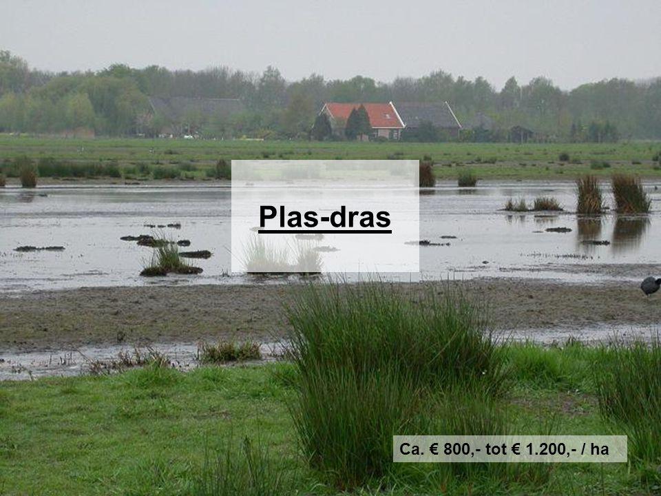 Plas-dras Ca. € 800,- tot € 1.200,- / ha