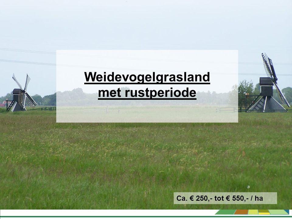 Weidevogelgrasland met rustperiode Ca. € 250,- tot € 550,- / ha