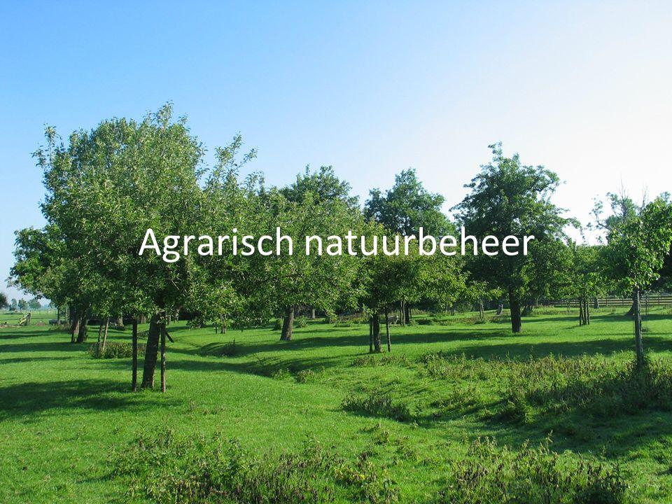 Natuur in Nederland •Natuurgebieden - Ecologische Hoofdstructuur - Provinciale natuurgebieden - Verbindingszones - Natura 2000 •Agrarische gebieden - Agrarisch natuurbeheer - Landgoederen