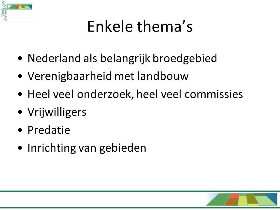 Enkele thema's •Nederland als belangrijk broedgebied •Verenigbaarheid met landbouw •Heel veel onderzoek, heel veel commissies •Vrijwilligers •Predatie