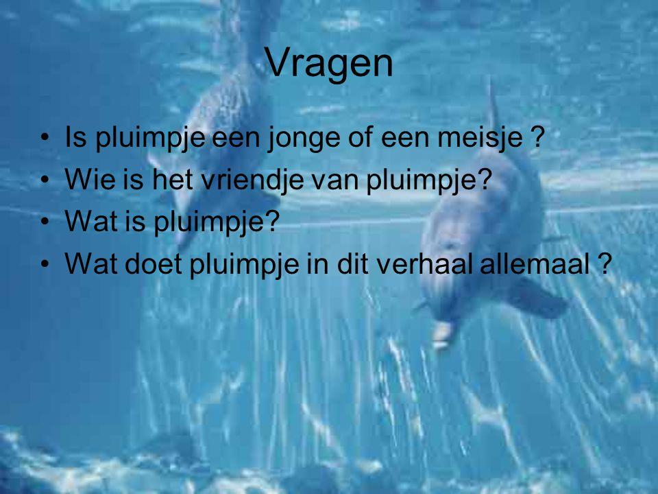 Filmpje http://www.schooltv.nl/beeldbank/clip/20030 623_kalksteen02