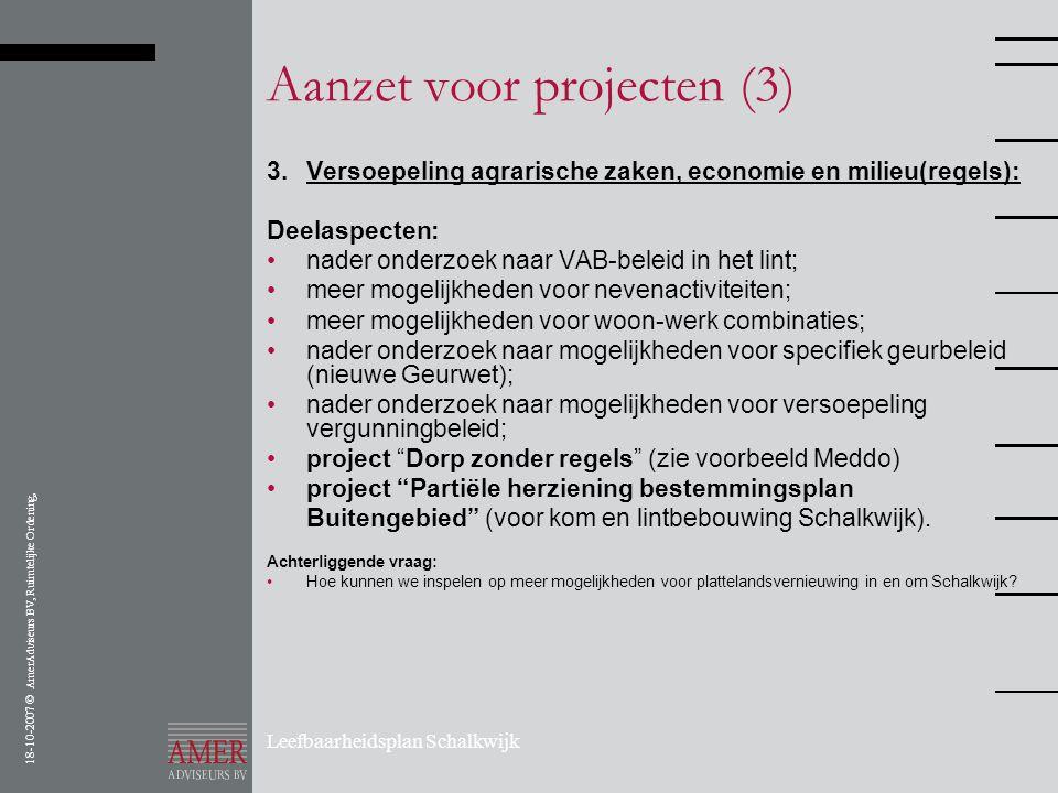 18-10-2007 © AmerAdviseurs BV, Ruimtelijke Ordening, Leefbaarheidsplan Schalkwijk Aanzet voor projecten (3) 3.Versoepeling agrarische zaken, economie