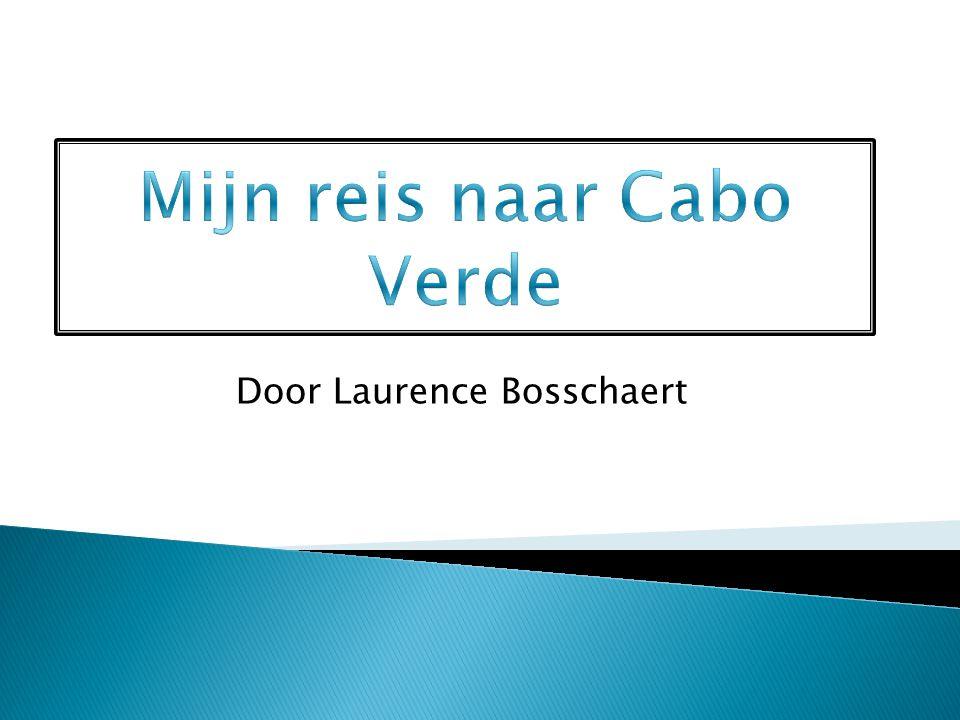 Door Laurence Bosschaert