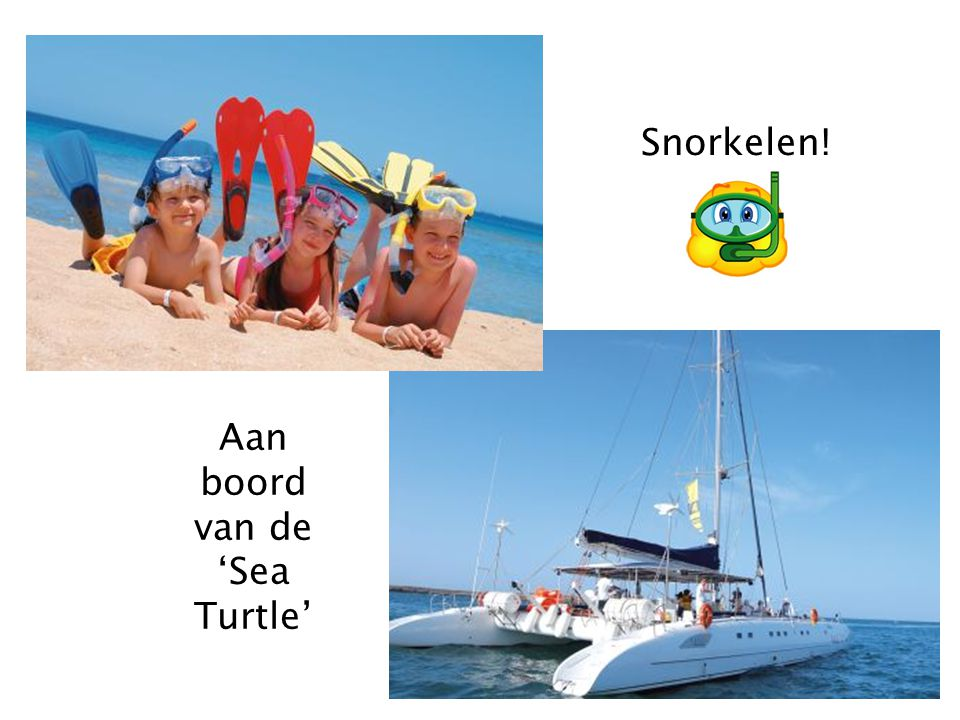 Snorkelen! Aan boord van de 'Sea Turtle'