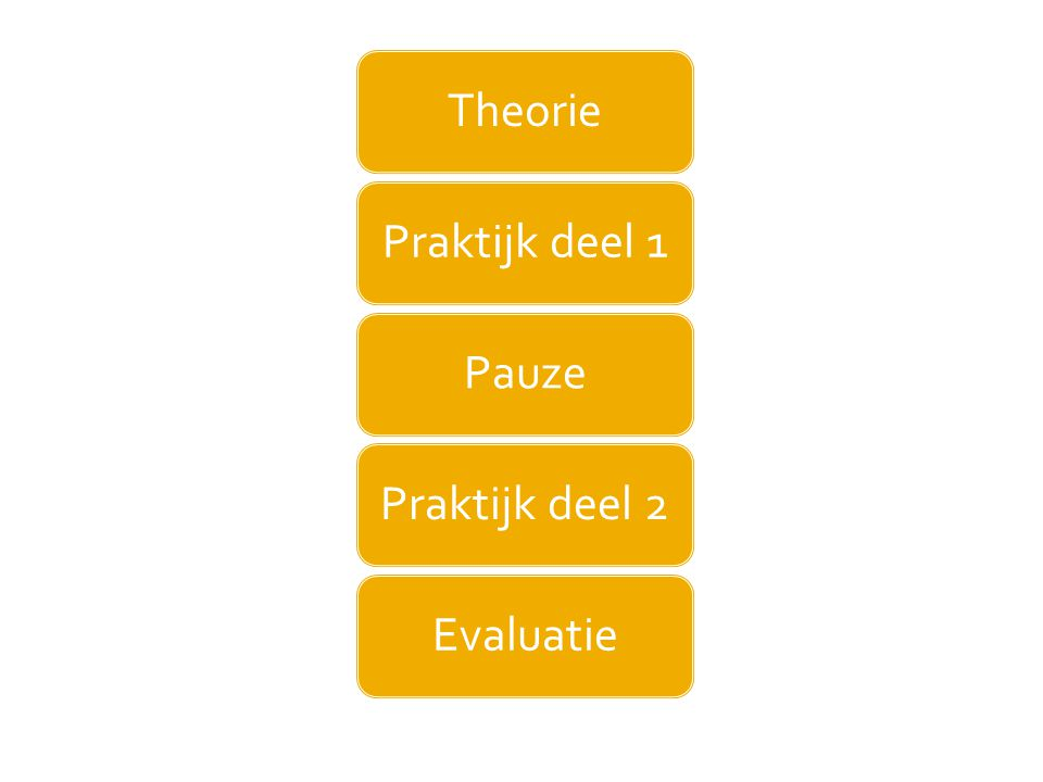 TheoriePraktijk deel 1PauzePraktijk deel 2Evaluatie