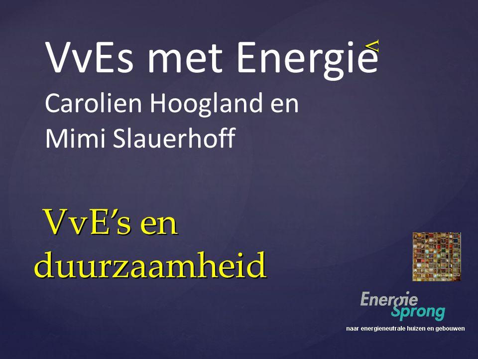 VvE's en duurzaamheid VvE's en duurzaamheid V VvEs met Energie Carolien Hoogland en Mimi Slauerhoff