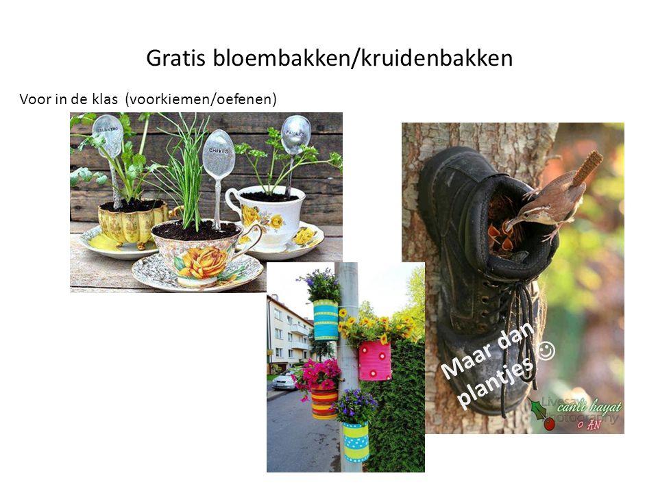 Gratis bloembakken/kruidenbakken Voor in de klas (voorkiemen/oefenen) Maar dan plantjes 