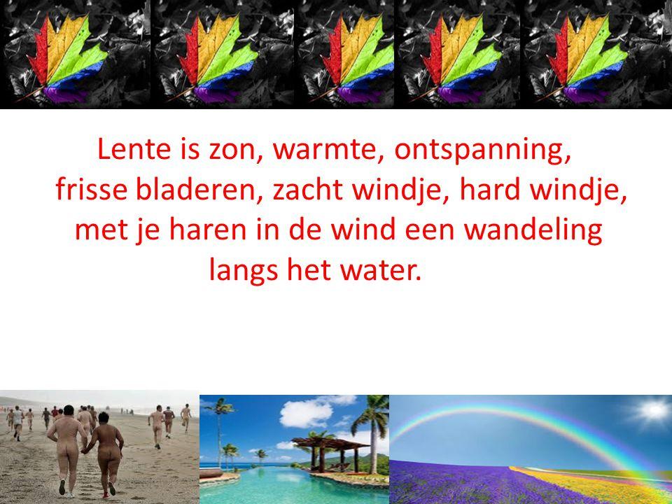 Lente is zon, warmte, ontspanning, frisse bladeren, zacht windje, hard windje, met je haren in de wind een wandeling langs het water.