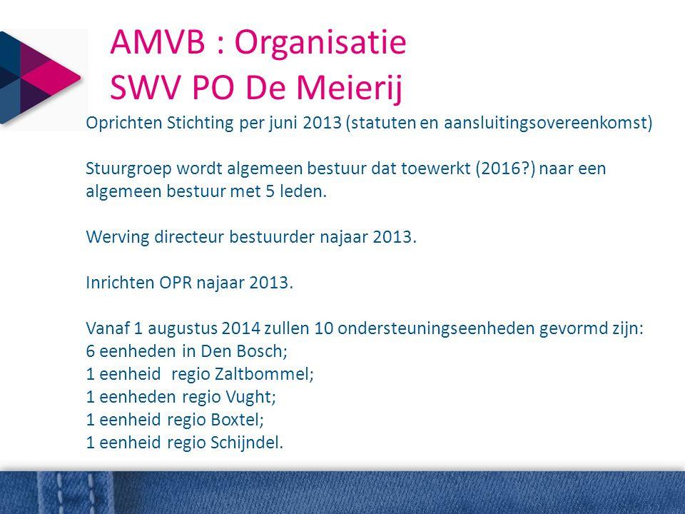 AMVB : Organisatie SWV PO De Meierij Oprichten Stichting per juni 2013 (statuten en aansluitingsovereenkomst) Stuurgroep wordt algemeen bestuur dat to