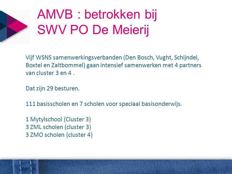 AMVB : betrokken bij SWV PO De Meierij Vijf WSNS samenwerkingsverbanden (Den Bosch, Vught, Schijndel, Boxtel en Zaltbommel) gaan intensief samenwerken