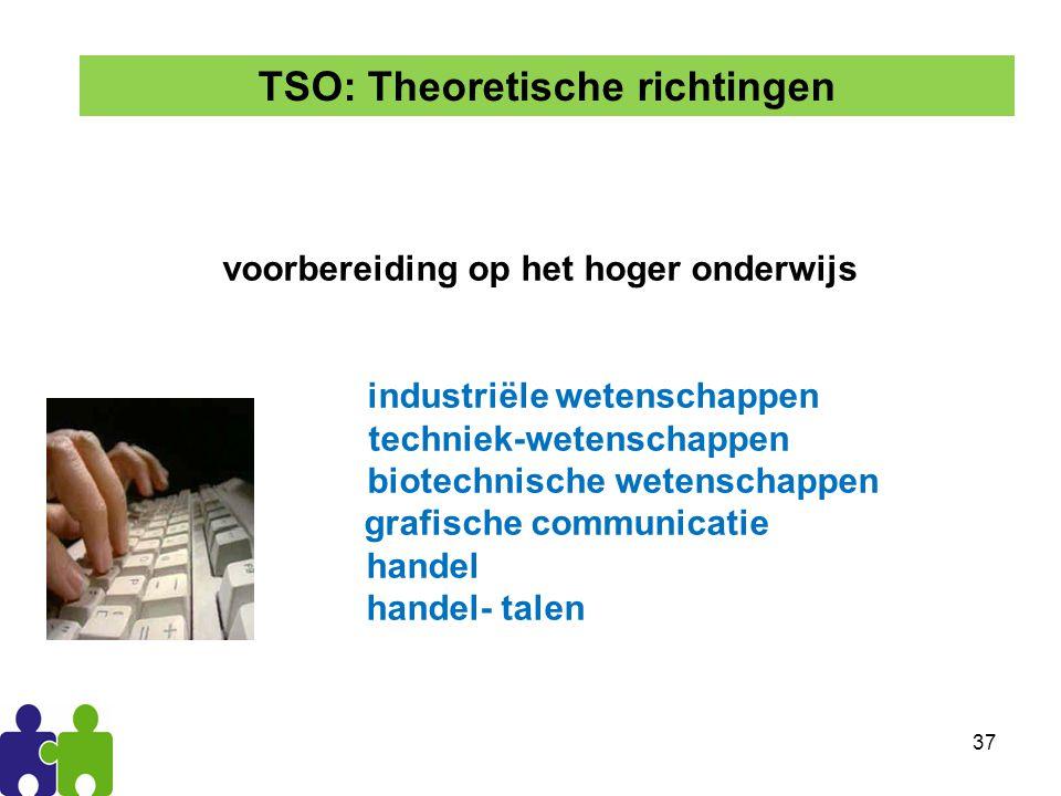 37 voorbereiding op het hoger onderwijs industriële wetenschappen techniek-wetenschappen biotechnische wetenschappen grafische communicatie handel handel- talen TSO: Theoretische richtingen