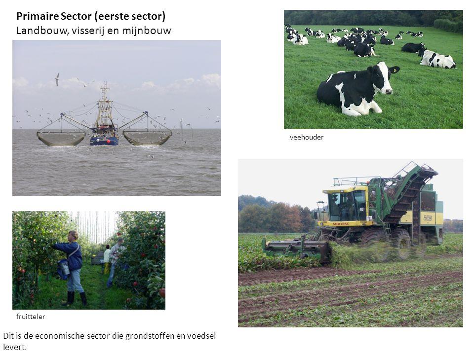 Primaire Sector (eerste sector) Landbouw, visserij en mijnbouw Dit is de economische sector die grondstoffen en voedsel levert. fruitteler veehouder