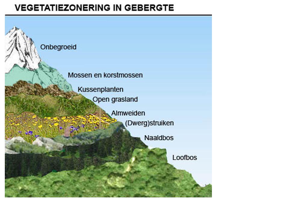 Geboorte en sterfte in Duitsland 1950 – 2012 Duitsland heeft een sterfteoverschot, Nederland niet §2 De bevolking van Duitsland