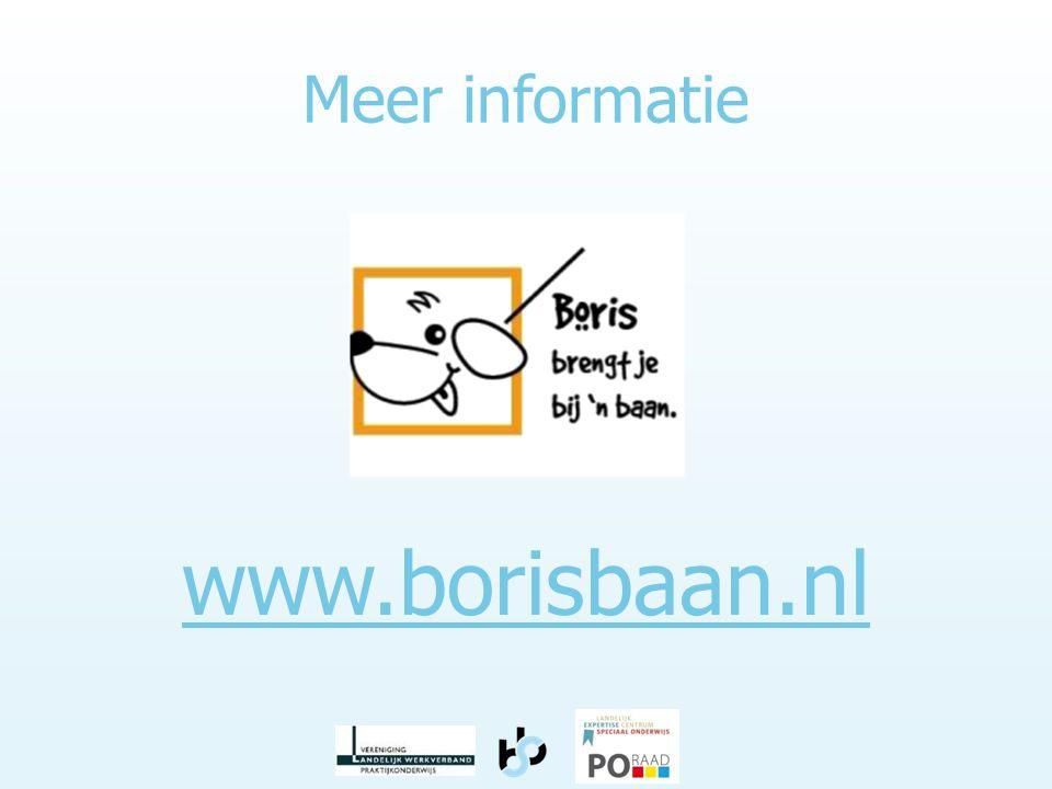Meer informatie www.borisbaan.nl