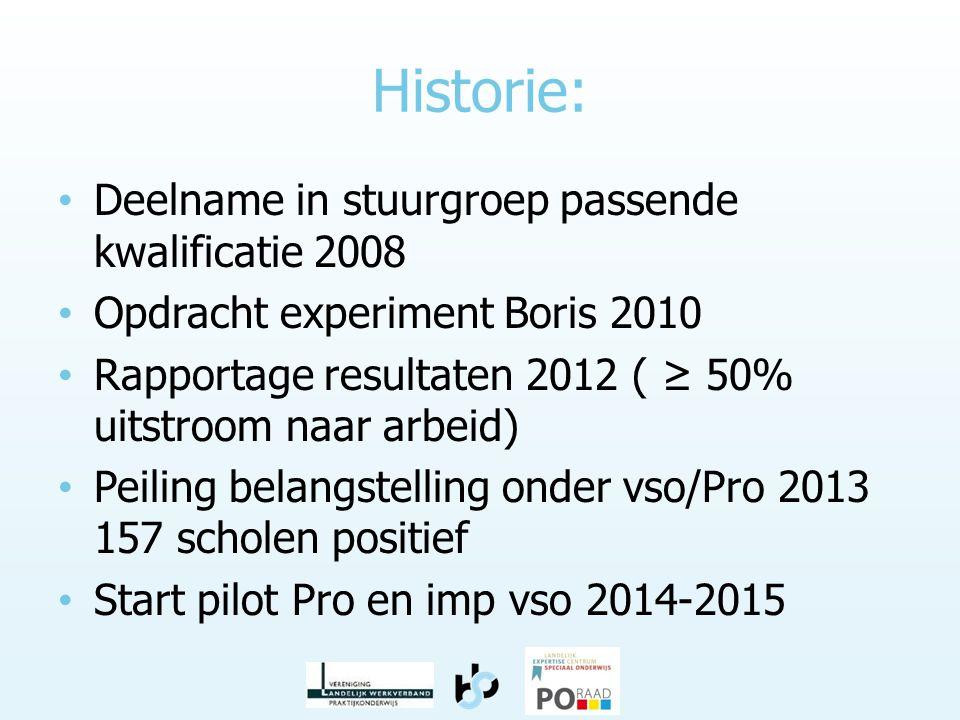 Historie: • Deelname in stuurgroep passende kwalificatie 2008 • Opdracht experiment Boris 2010 • Rapportage resultaten 2012 ( ≥ 50% uitstroom naar arb