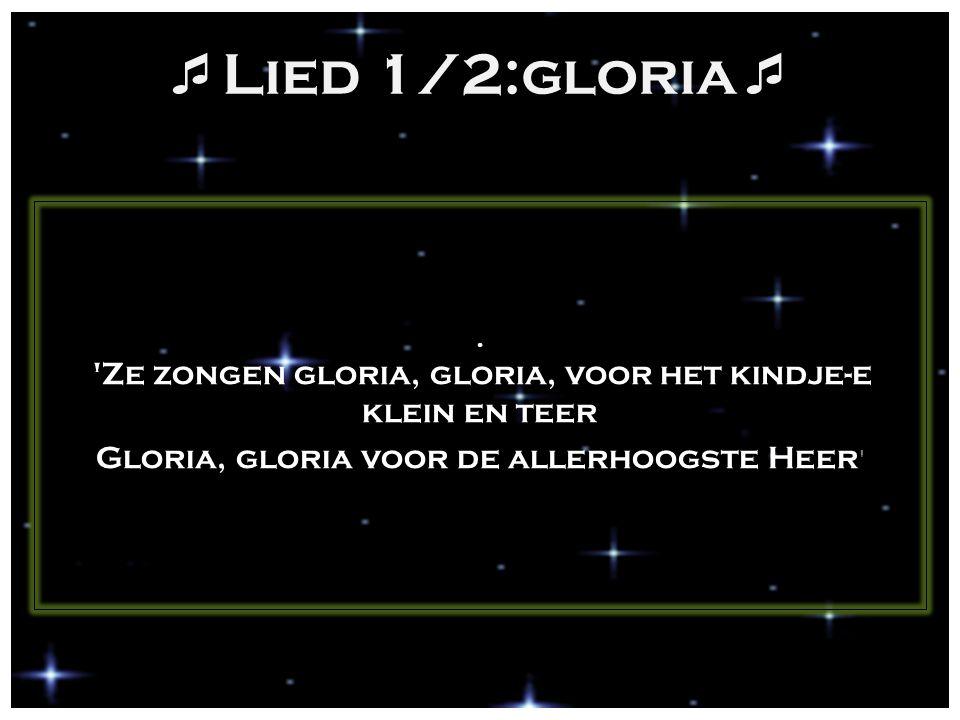  Lied 1/2:gloria . 'Ze zongen gloria, gloria, voor het kindje-e klein en teer Gloria, gloria voor de allerhoogste Heer '