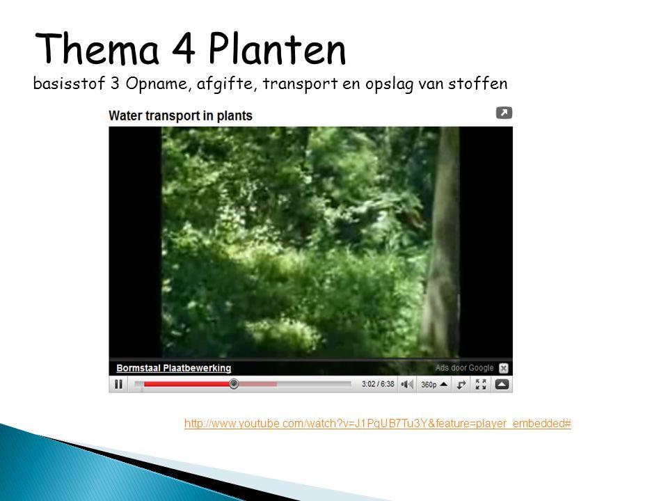 Thema 4 Planten basisstof 3 Opname, afgifte, transport en opslag van stoffen http://www.youtube.com/watch?v=J1PqUB7Tu3Y&feature=player_embedded#