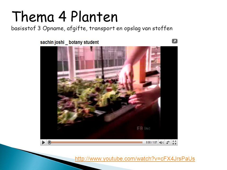 Thema 4 Planten basisstof 3 Opname, afgifte, transport en opslag van stoffen http://www.youtube.com/watch?v=cFX4JrsPaUs