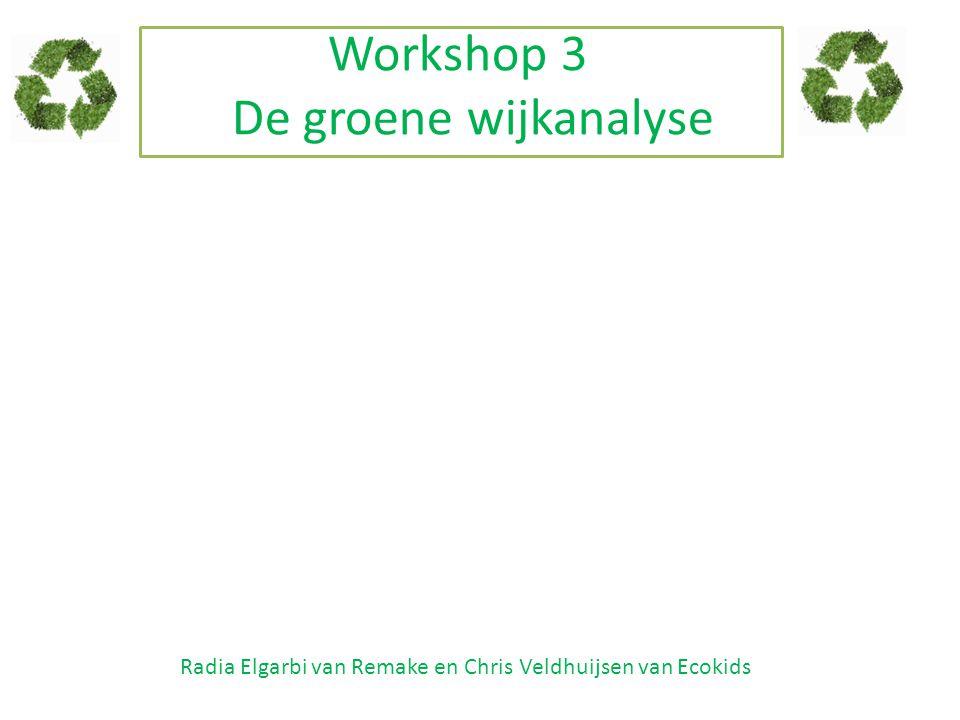 Workshop 3 De groene wijkanalyse Radia Elgarbi van Remake en Chris Veldhuijsen van Ecokids