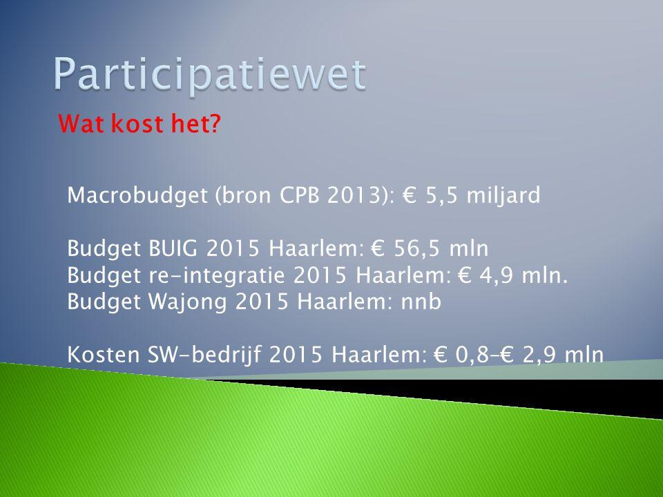 Wat kost het? Macrobudget (bron CPB 2013): € 5,5 miljard Budget BUIG 2015 Haarlem: € 56,5 mln Budget re-integratie 2015 Haarlem: € 4,9 mln. Budget Waj