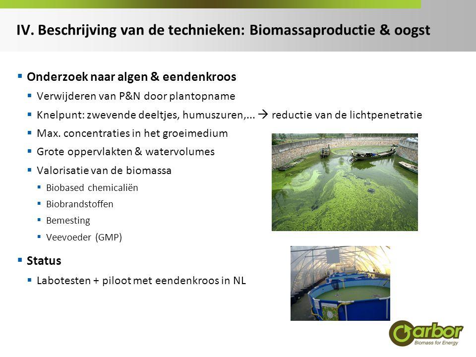 IV. Beschrijving van de technieken: Biomassaproductie & oogst  Onderzoek naar algen & eendenkroos  Verwijderen van P&N door plantopname  Knelpunt: