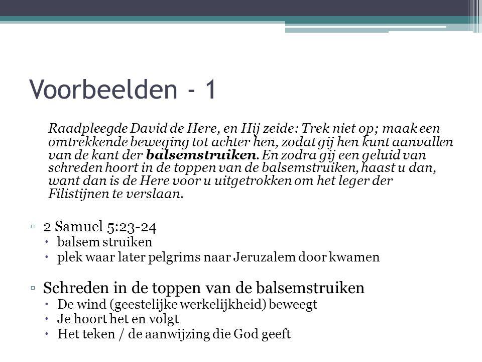 Voorbeelden - 1 Raadpleegde David de Here, en Hij zeide: Trek niet op; maak een omtrekkende beweging tot achter hen, zodat gij hen kunt aanvallen van