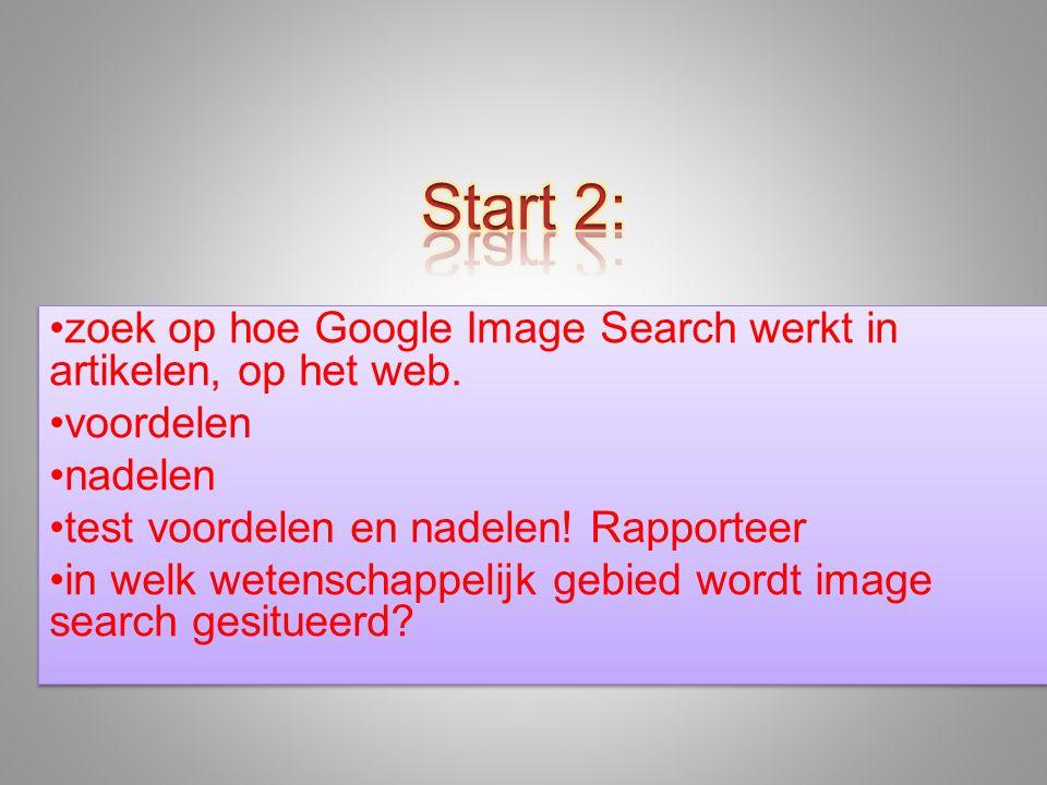 •zoek op hoe Google Image Search werkt in artikelen, op het web.