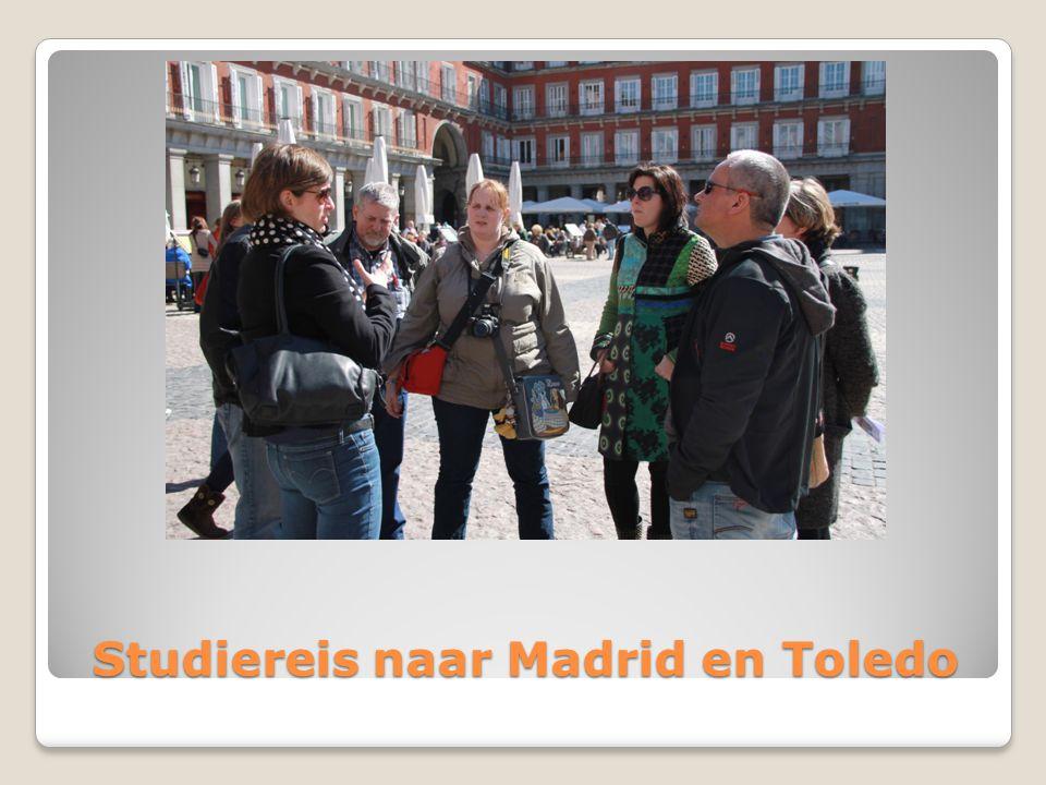 Studiereis naar Madrid en Toledo