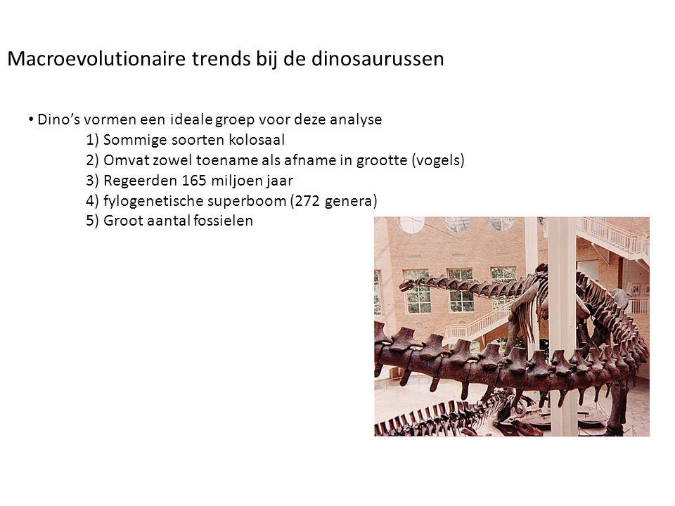 • Dino's vormen een ideale groep voor deze analyse 1) Sommige soorten kolosaal 2) Omvat zowel toename als afname in grootte (vogels) 3) Regeerden 165
