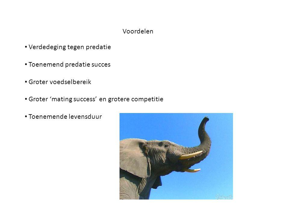 Voordelen • Verdedeging tegen predatie • Toenemend predatie succes • Groter voedselbereik • Groter 'mating success' en grotere competitie • Toenemende