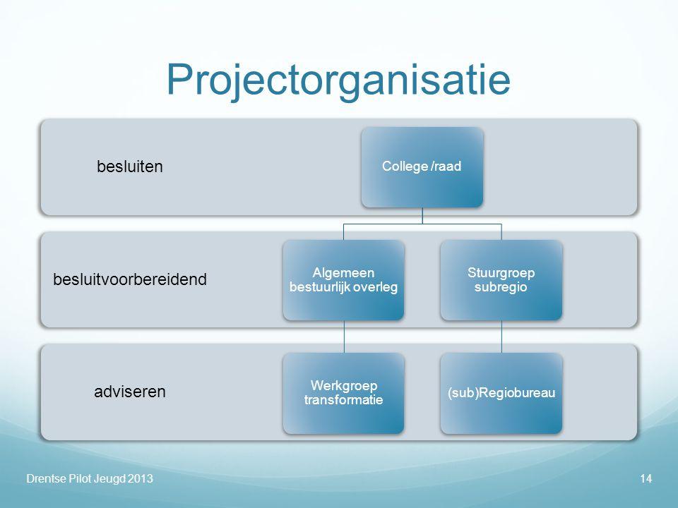 Projectorganisatie adviseren besluitvoorbereidend besluiten College /raad Algemeen bestuurlijk overleg Werkgroep transformatie Stuurgroep subregio (su