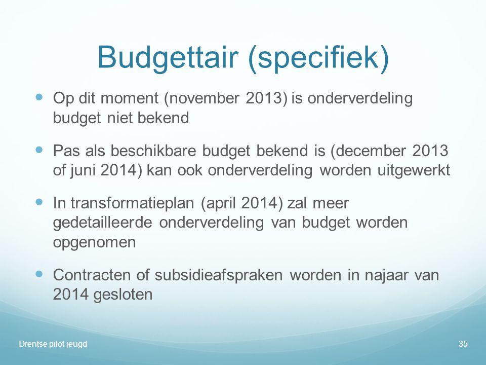 Budgettair (specifiek)  Op dit moment (november 2013) is onderverdeling budget niet bekend  Pas als beschikbare budget bekend is (december 2013 of j