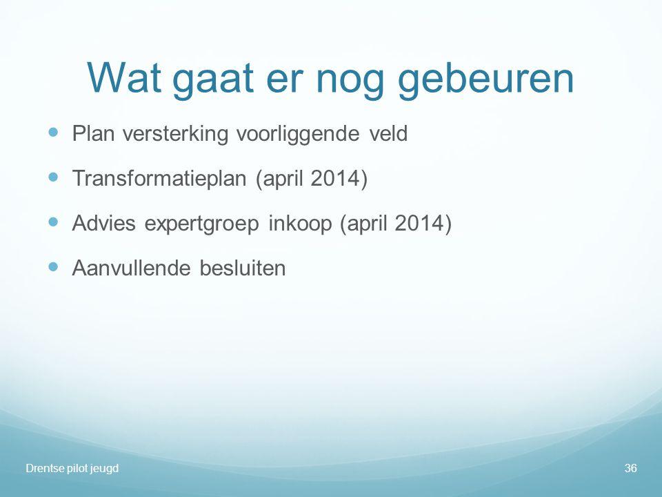 Wat gaat er nog gebeuren  Plan versterking voorliggende veld  Transformatieplan (april 2014)  Advies expertgroep inkoop (april 2014)  Aanvullende