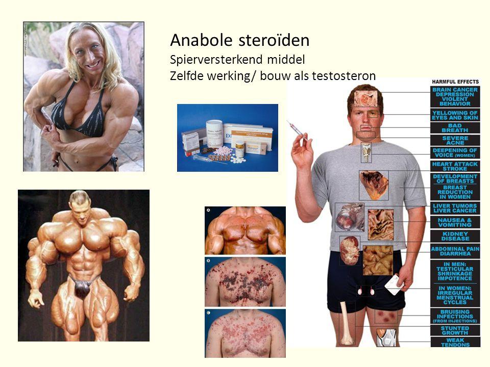 Anabole steroïden Spierversterkend middel Zelfde werking/ bouw als testosteron